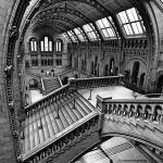 Escher View