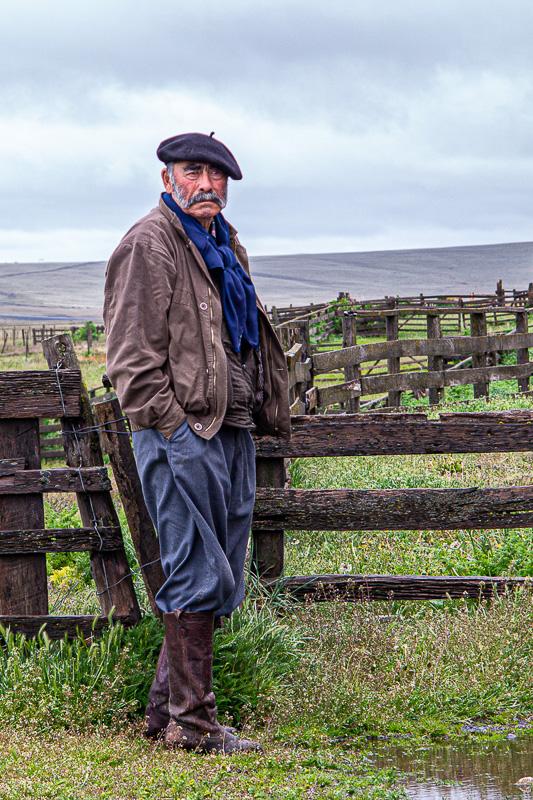 Patagonian Shepherd